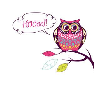 "Cute Vector Owl. ""Hoooot"" card"