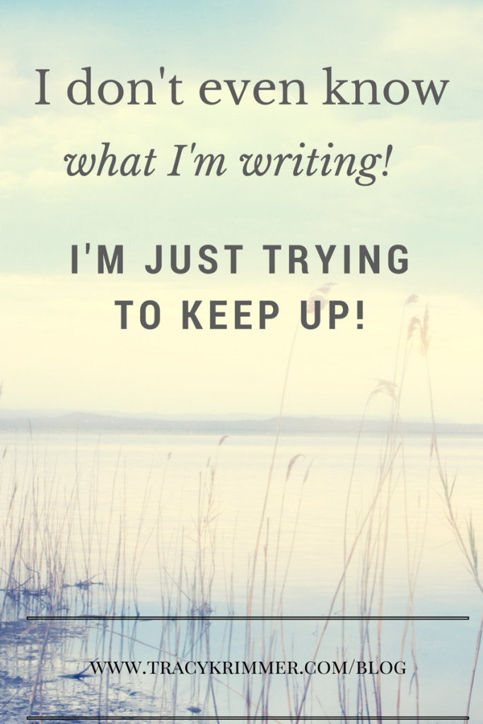 I saw a meme with these words this month. I can't think of a better description for NaNoWriMo.